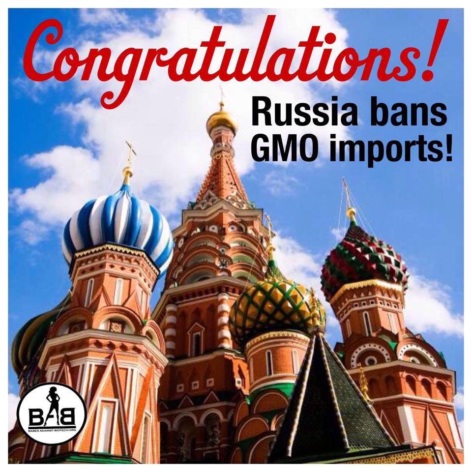 FG AGENCIES SOON TO UNLEASHED DANGEROUS GMO PRODUCTS ONTO NIGERIA MARKET