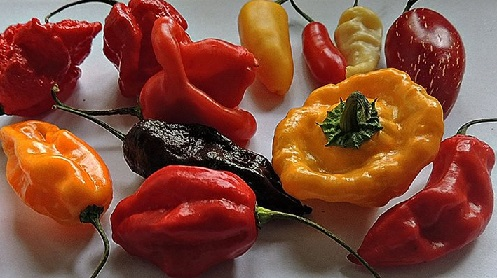 Consumption of Hot Red Pepper May Lower Risk of Death by 13% – Study